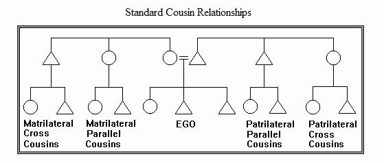 Make A Kinship Diagram Online Awesome All Cousins are Not Created Equal