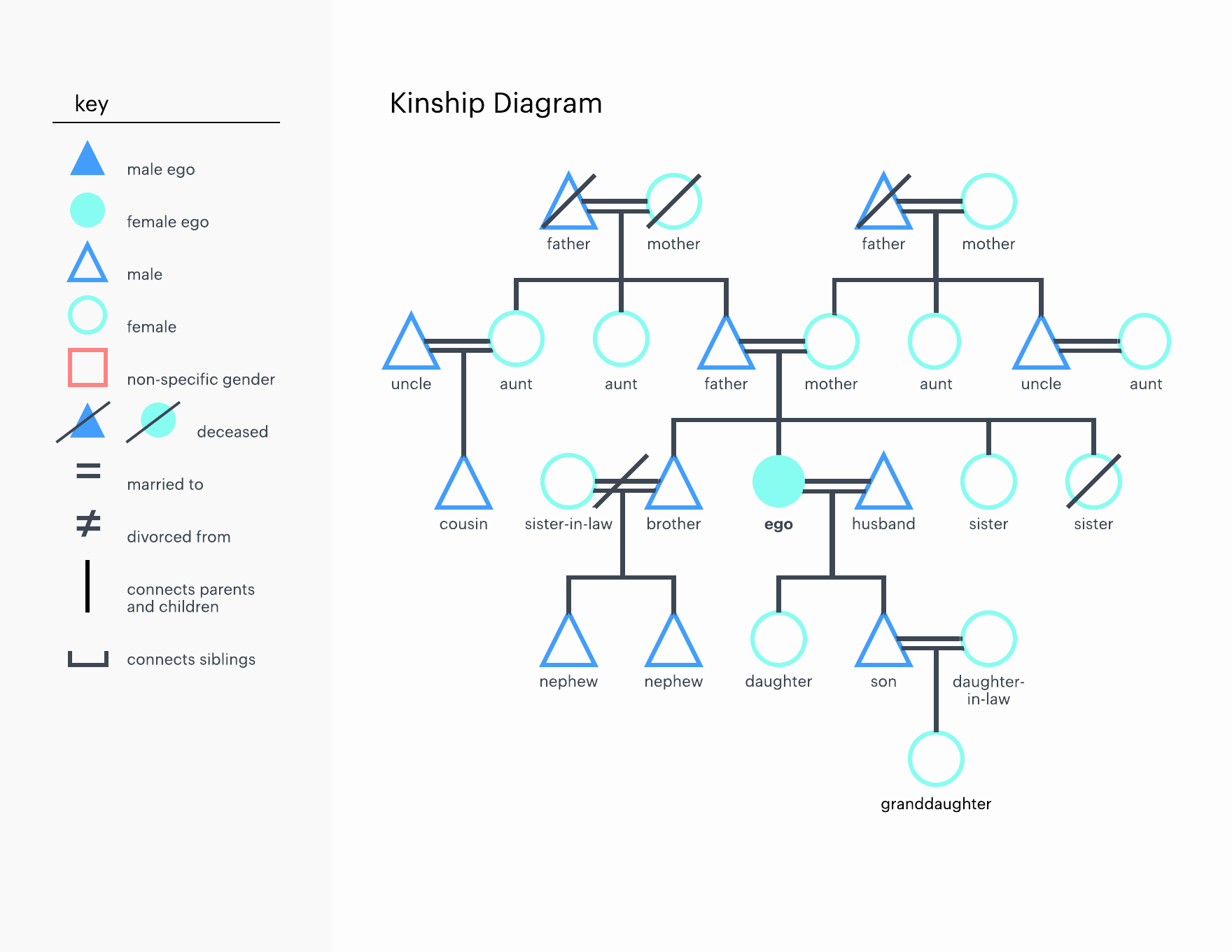 Make A Kinship Diagram Online Best Of How to Make A Kinship Diagram Line