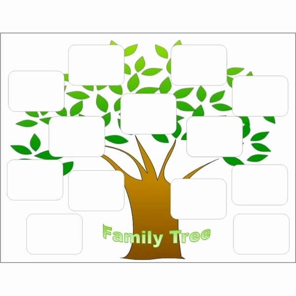 Make Family Tree In Word New Family Tree Maker Templates Beepmunk