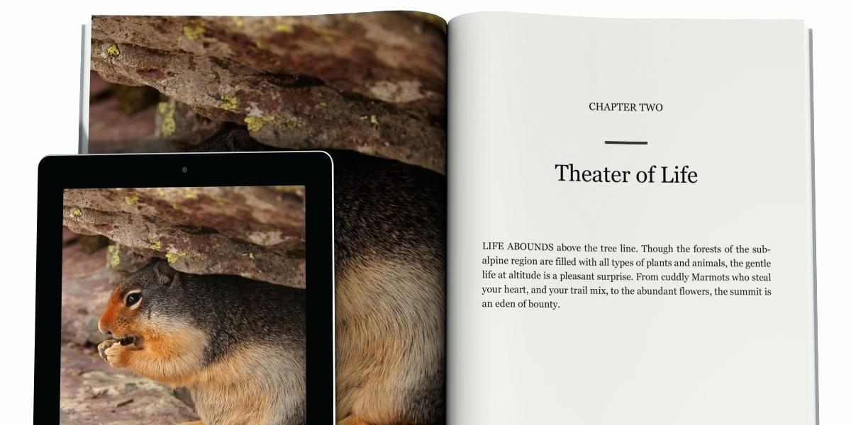 Make Your Own Address Book Fresh Word Address Book Template New Elegant Luxury Pretty Phone