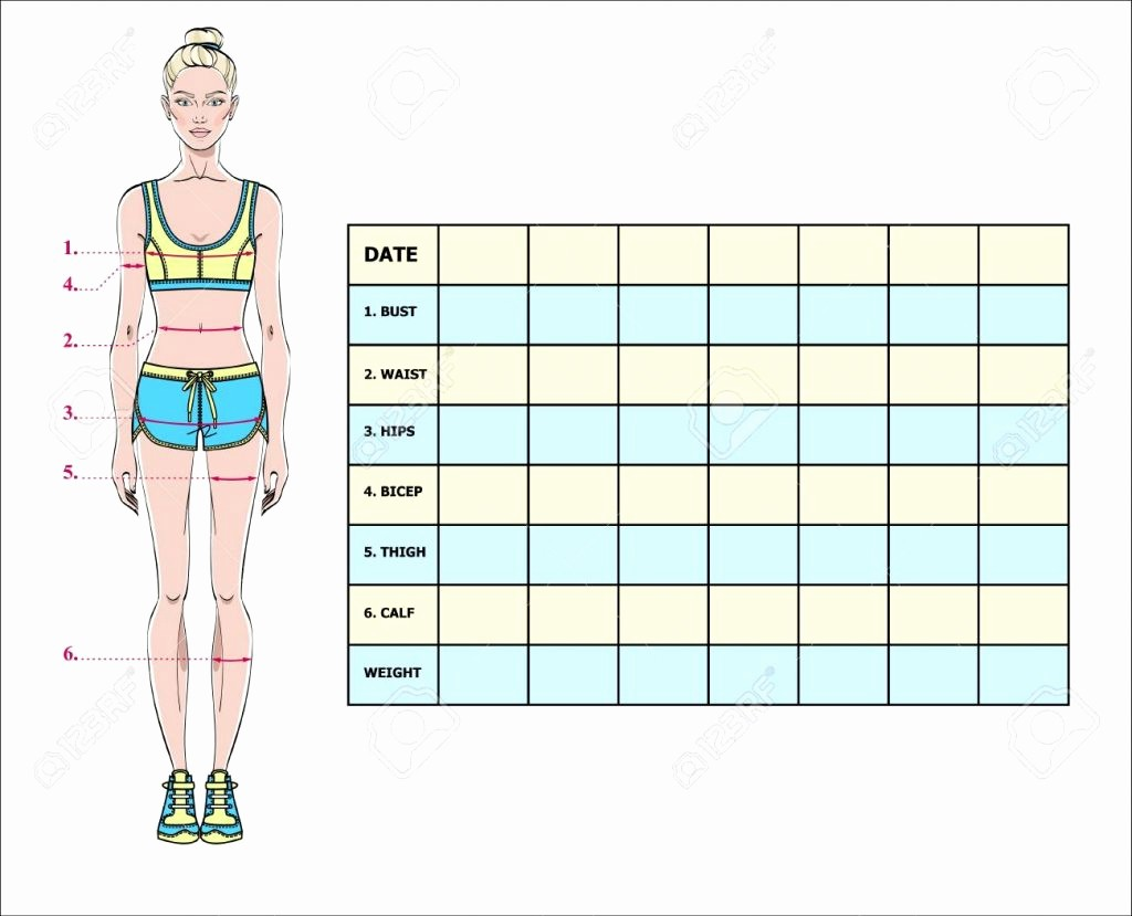 Measurements Chart for Weight Loss Luxury Free Body Measurement Chart Template Female Printable