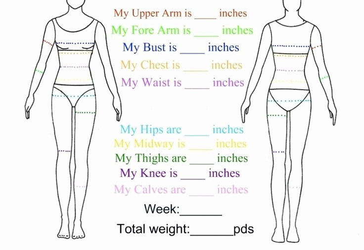 Measurements for Weight Loss Chart Best Of Body Measurement Chart Yahoo Image Search Results