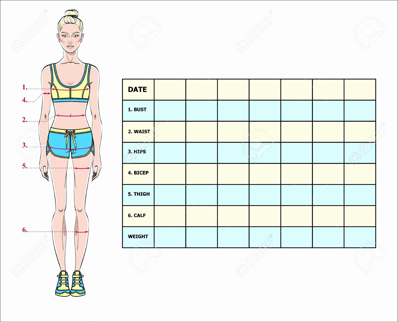Measuring Chart for Weight Loss Inspirational Free Body Measurement Chart Template Female Printable