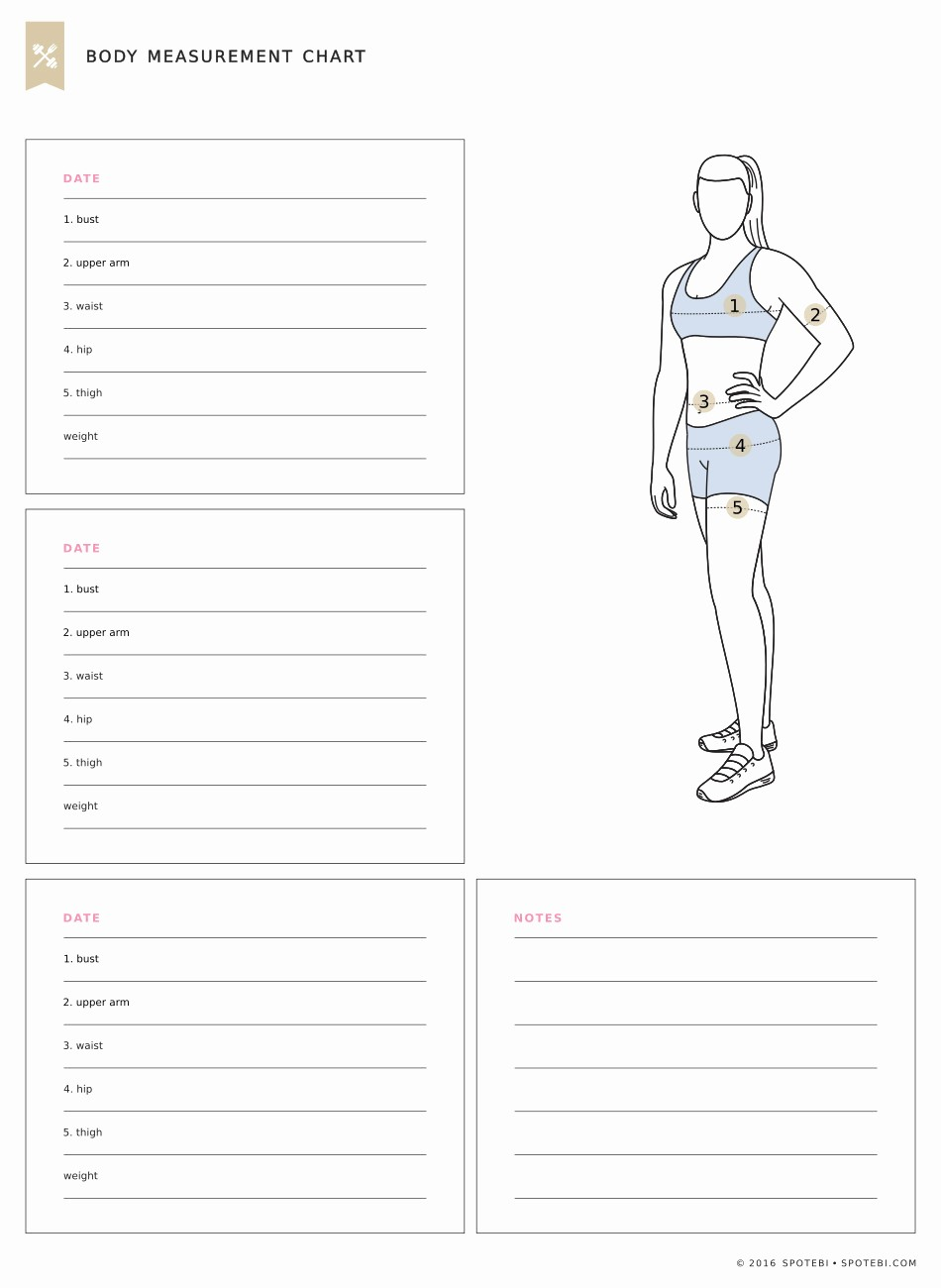 Measuring Chart for Weight Loss New Body Measurement Chart