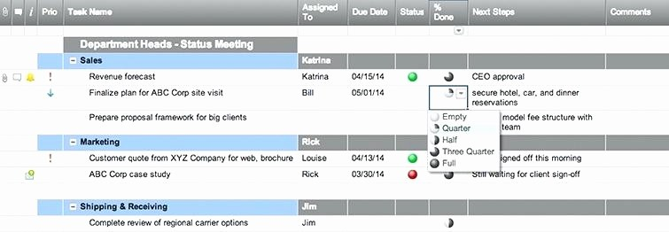 Meeting Action Items Tracker Excel Beautiful Status Meeting Template – Vitaesalute