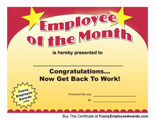 Member Of the Month Certificate Beautiful Employee Of Month Certificate