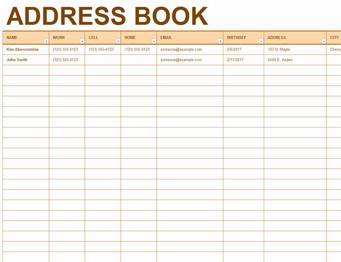 Microsoft Excel Address Book Template Elegant Address Book