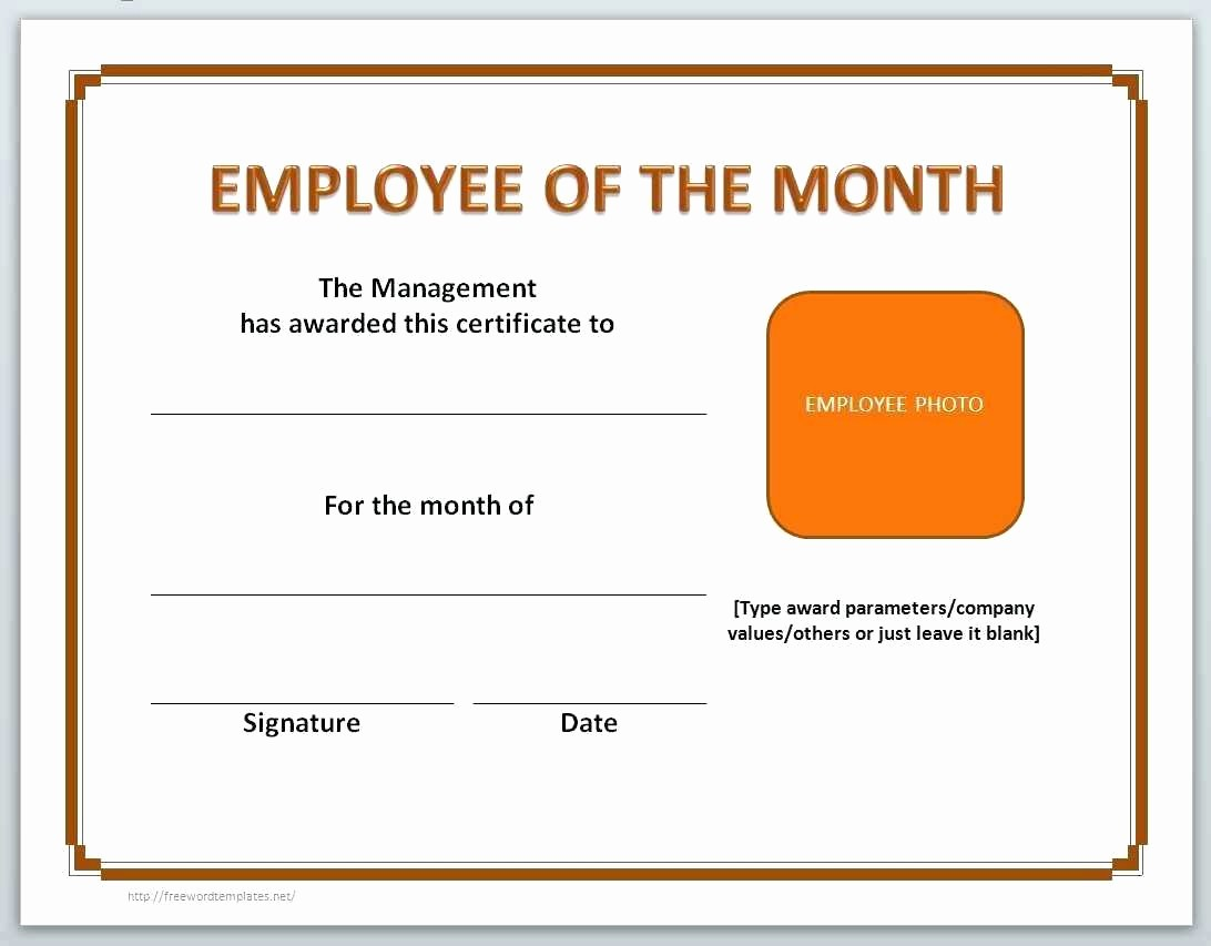 Microsoft Office Award Certificate Template Lovely Template Microsoft Word Award Certificate Template