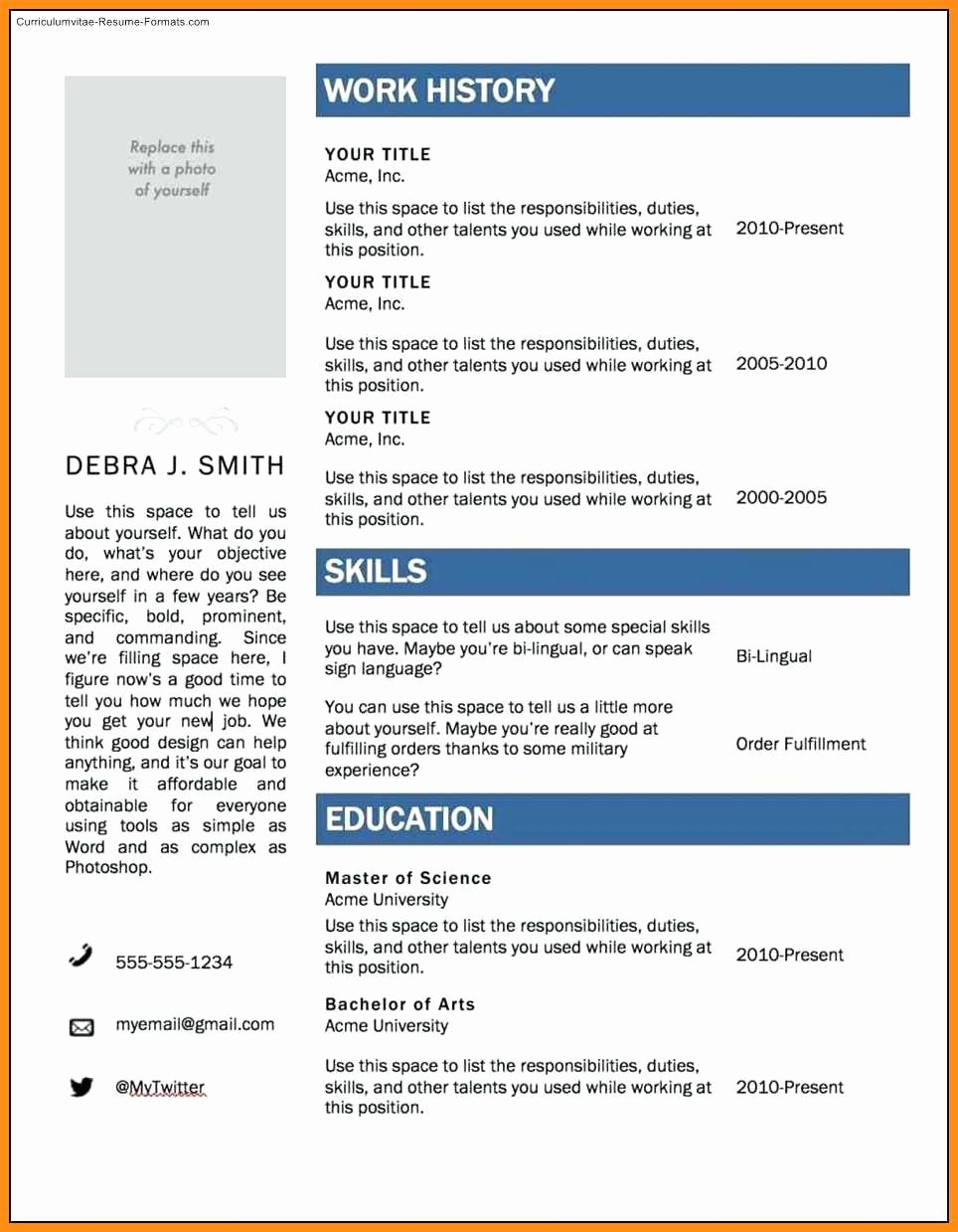 Microsoft Office Online Resume Template Best Of 9 Curriculum Vitae Template Microsoft Word