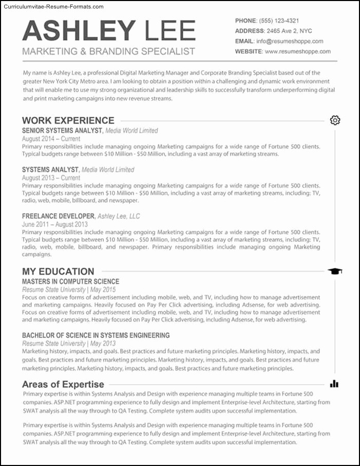 Microsoft Office Word Resume Template Lovely Microsoft Word Resume Template for Mac Free Samples