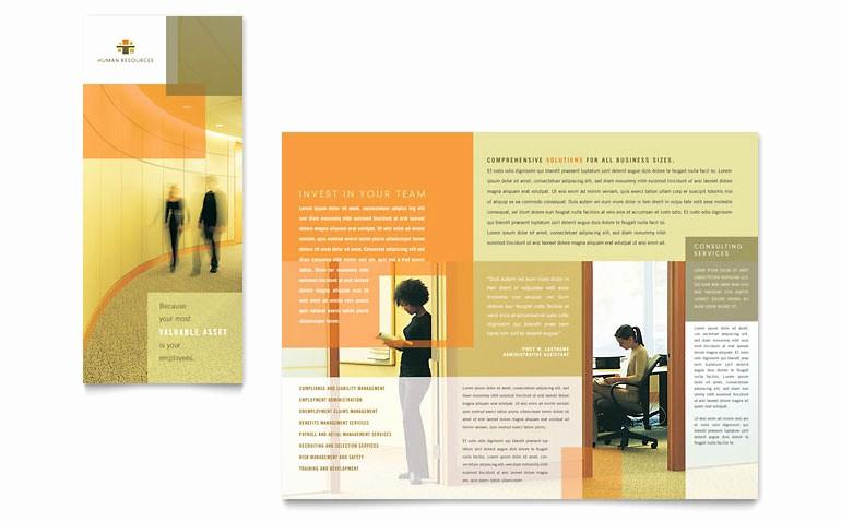 Microsoft Tri Fold Brochure Templates Awesome Hr Consulting Tri Fold Brochure Template Word & Publisher