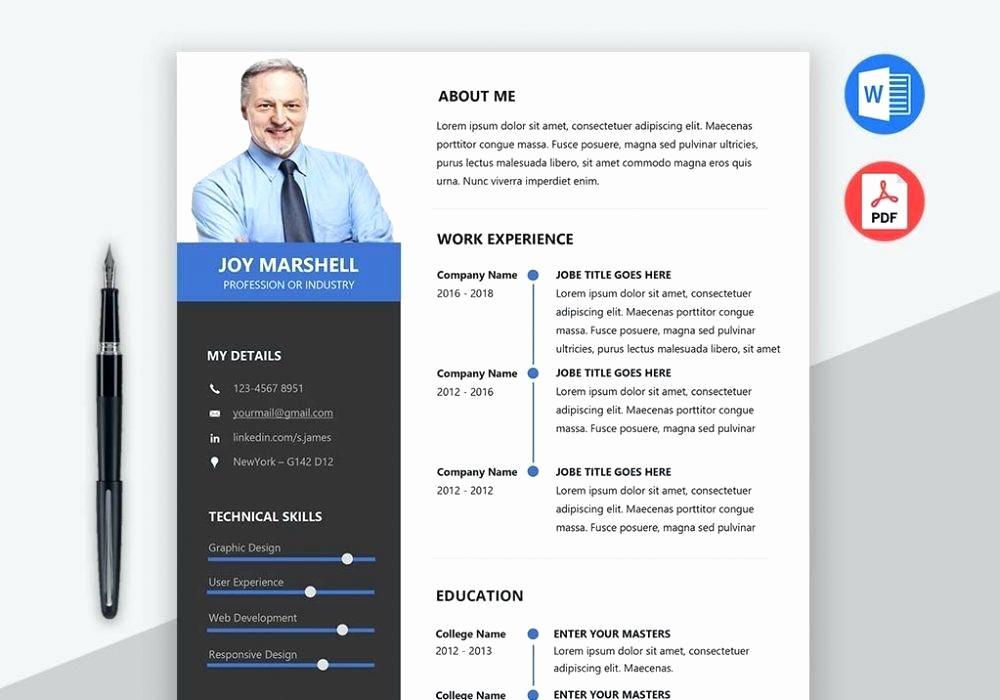 Microsoft Word 2007 Resume Template Luxury Professional Cv Templates Word format Resume Template