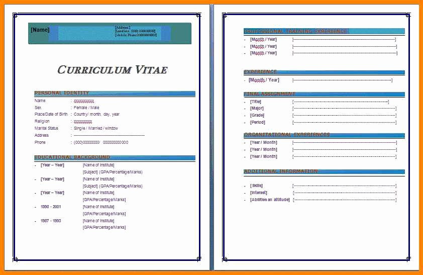 Microsoft Word 2007 Resume Templates Luxury Cv format In Ms Word 2007 Free Download Free Cv Template