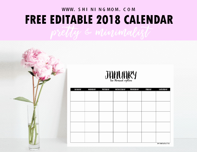 editable 2018 calendar template word