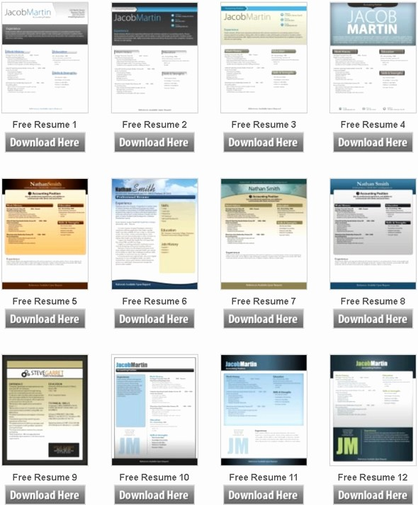 Microsoft Word Free Resume Templates Elegant 50 Free Microsoft Word Resume Templates for Download