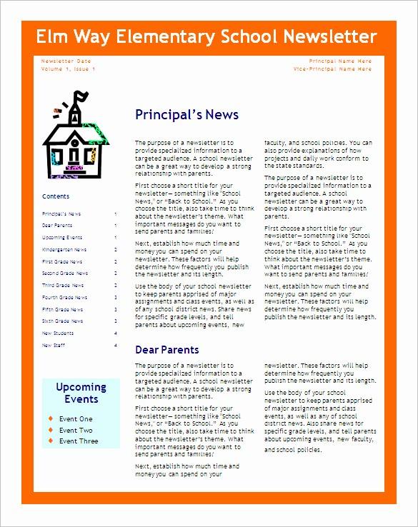 Microsoft Word Newsletter Template Free Luxury 5 School Newsletter Templates Doc Pdf