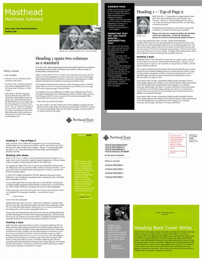 Microsoft Word Newsletter Templates Free Luxury Free Email Newsletter Templates to Create E Newsletters
