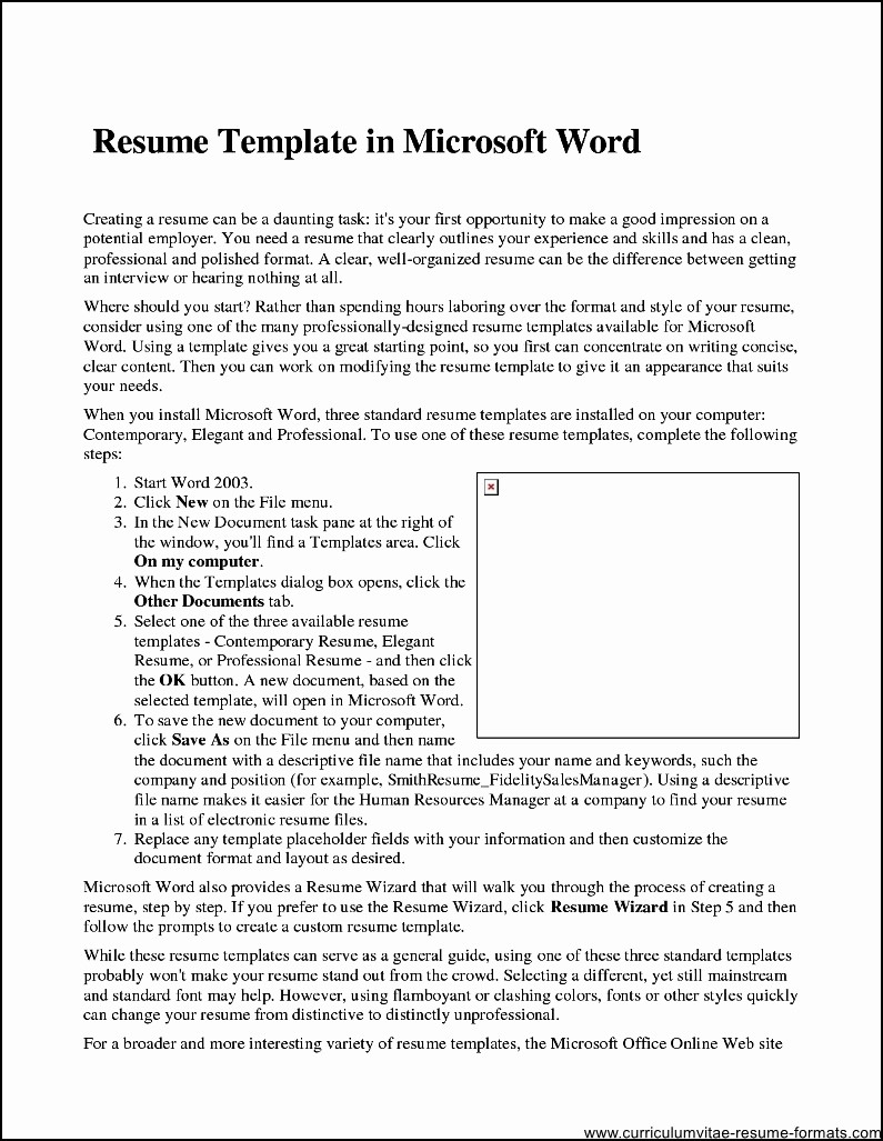Microsoft Word Professional Resume Template Inspirational Professional Resume Template Microsoft Word 2007 Free