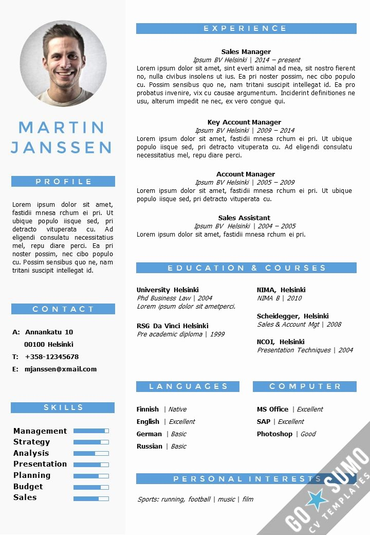 Microsoft Word Professional Resume Template New Cv Resume Template In Word Fully Editable Files Incl 2nd