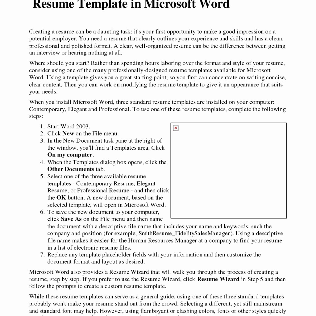 Microsoft Word Professional Resume Template New Resume Templates Microsoft Word 2003 Download