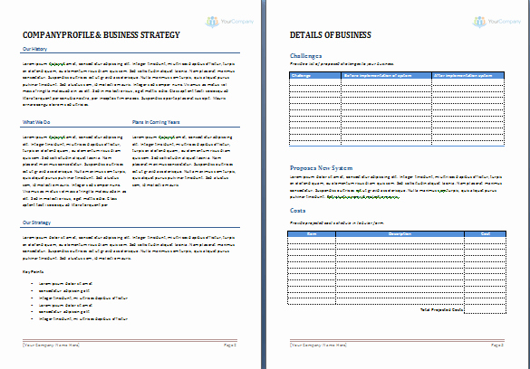 Microsoft Word Sales Proposal Template Unique Business Proposal Template