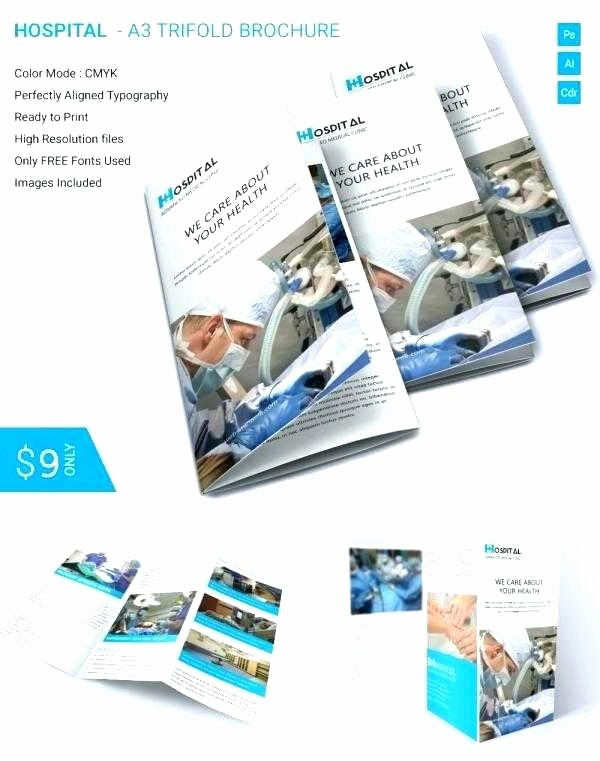 Microsoft Word Tri Fold Template Awesome 50 Lovely Microsoft Fice Brochure Templates