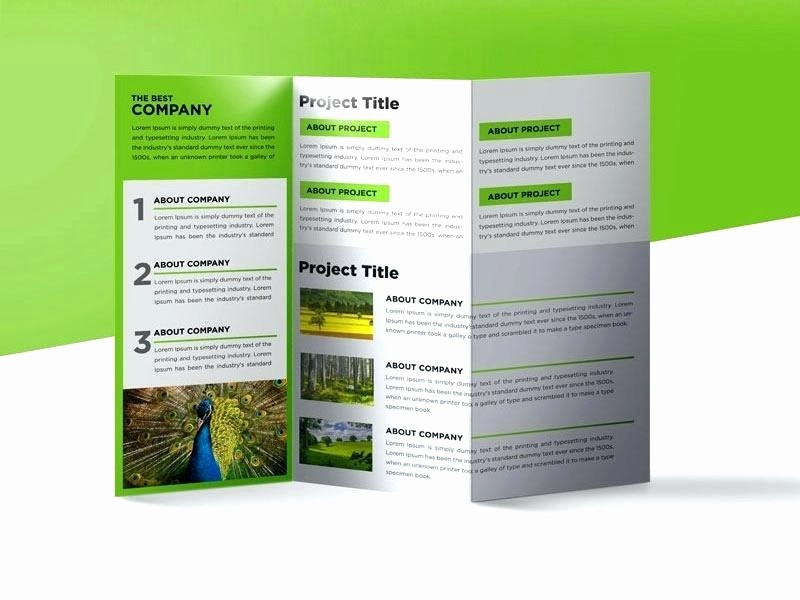 Microsoft Word Tri Fold Template Luxury 50 Luxury Free Tri Fold Brochure Templates Microsoft Word