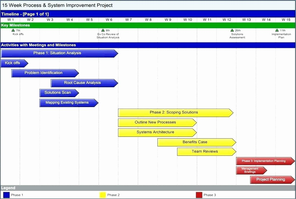 Milestone Chart In Project Management Best Of Project Milestone Chart Template