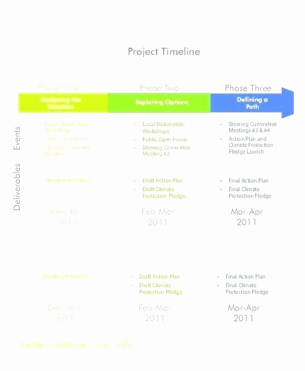 Milestone Chart In Project Management Lovely Project Milestone Chart Template