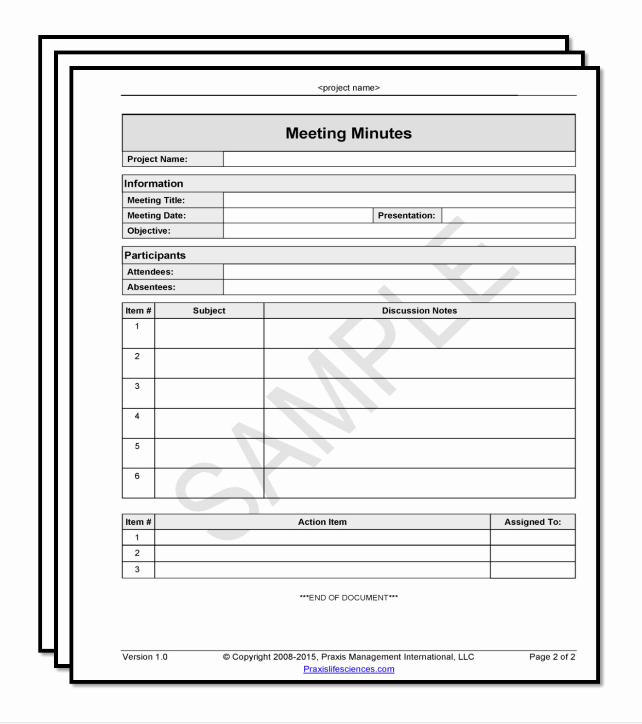 Minutes Of the Meeting Template New Meeting Minutes Template