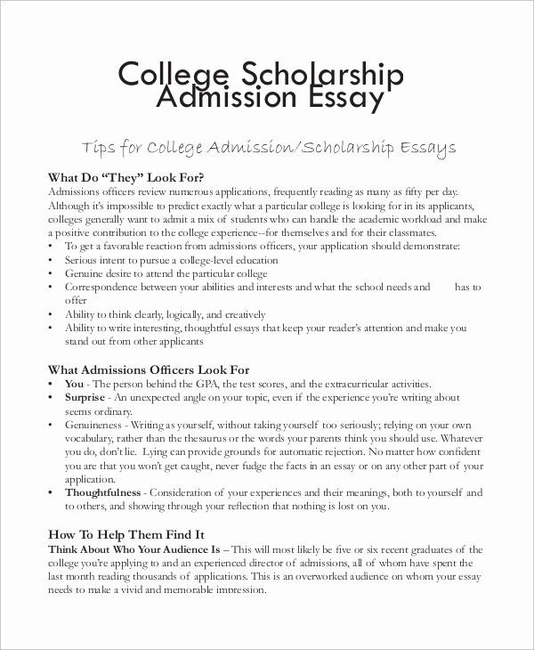 Mla format for College Essay Elegant College Essay format Template