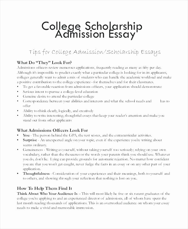 Mla format for College Essay Unique Writing A College Essay format College Essay format