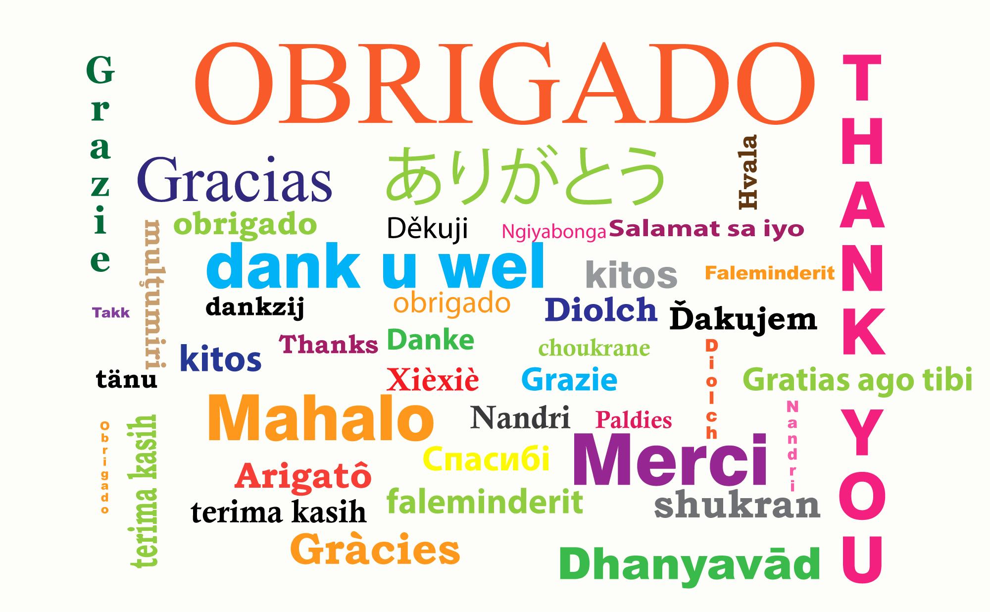 Modelos De Cartas De Agradecimento Beautiful Carta De Apresentação