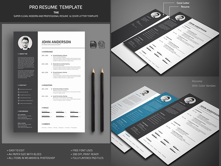 Modern Resume Template Free Word Lovely 25 Professional Ms Word Resume Templates with Simple