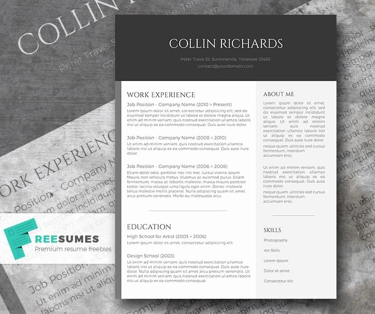 Modern Resume Template Free Word New 100 Free Resume Templates [ Psd Word ]