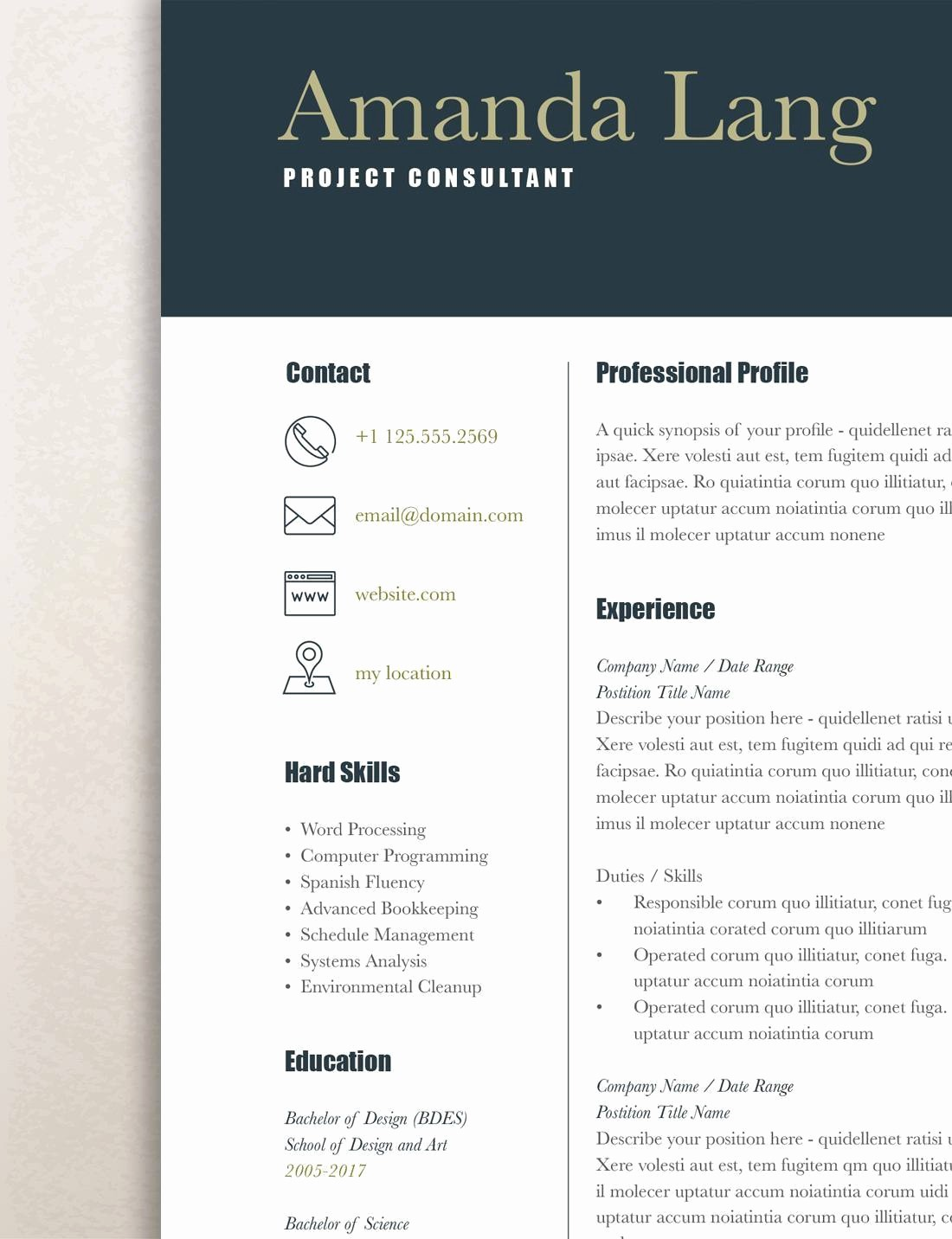Modern Resume Template Free Word New Modern Resume Template Professional Resume Template Word
