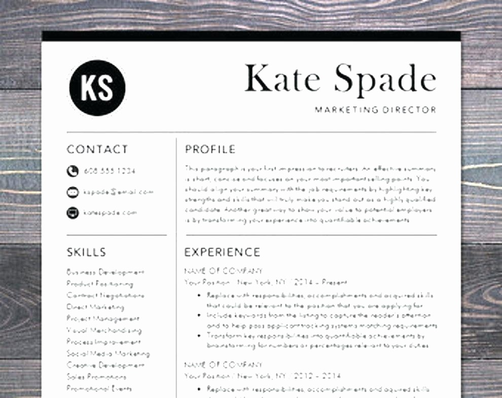 Modern Resume Template Free Word Unique Modern Resume Template Free Download Reeviewer