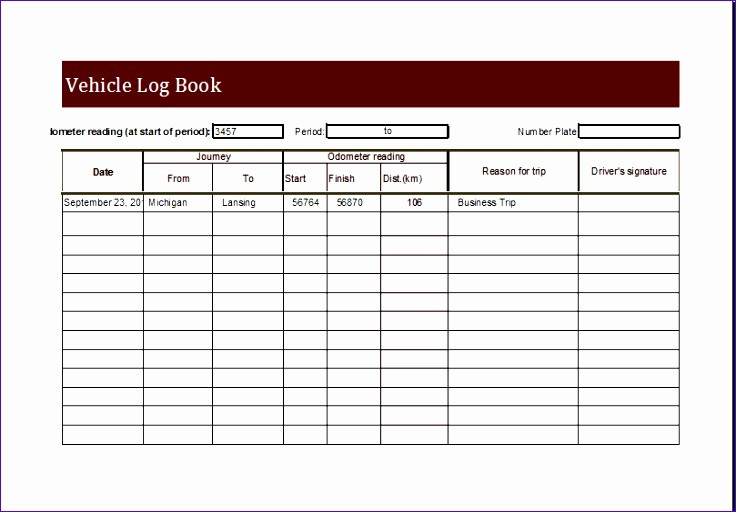 Monthly P&l Template Awesome 6 Personal Medical Health Record Sheet Exceltemplates
