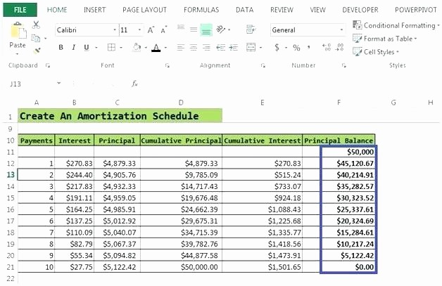 Mortgage Interest Amortization Schedule Excel Elegant Amortization Table In Excel Loan Amortization Calculator