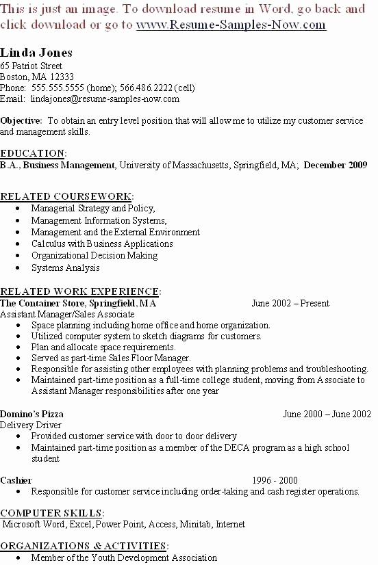 Ms Office Business Plan Template Awesome Service Business Analysis Business Plan – Blogopoly
