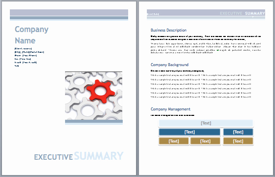 Ms Office Business Plan Template New Executive Summary Template Business Plan Microsoft