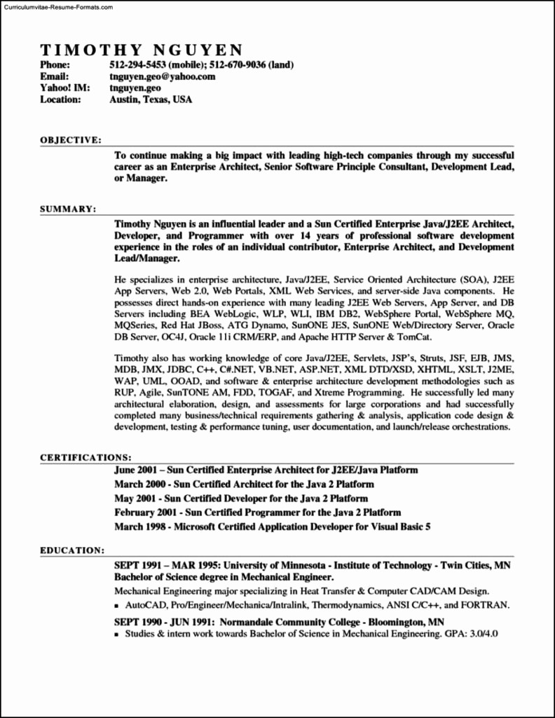 resume template in microsoft word 2007