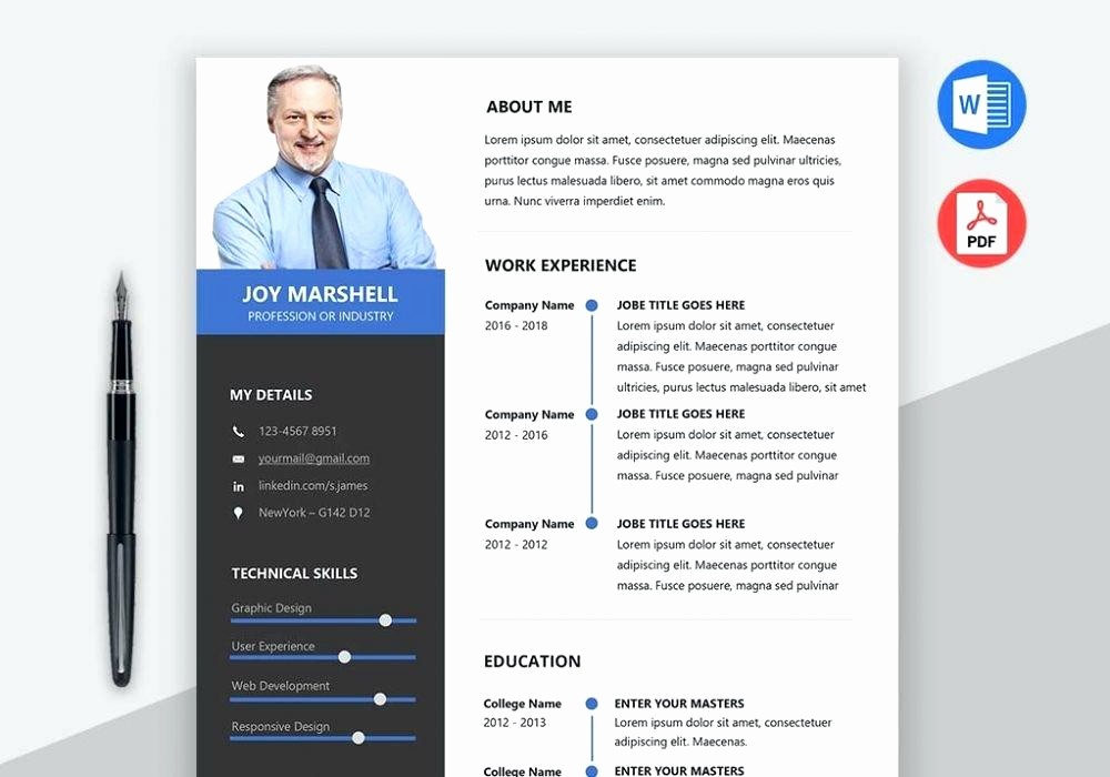 Ms Word 2007 Resume Templates Luxury Professional Cv Templates Word format Resume Template