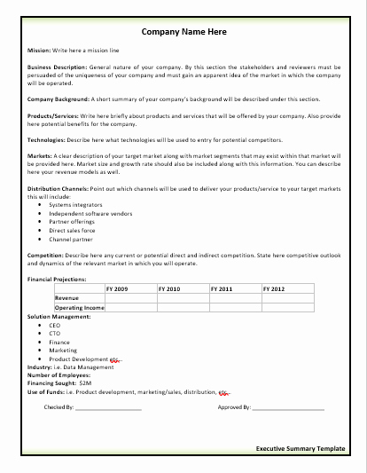 Ms Word Executive Summary Template Awesome 2 Executive Summary Templates