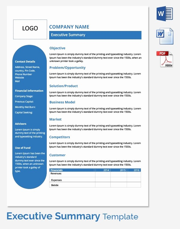 Ms Word Executive Summary Template Awesome Free Executive Summary Template Download In Word Pdf