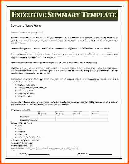 Ms Word Executive Summary Template Luxury Sample Of Executive Summary for Resume