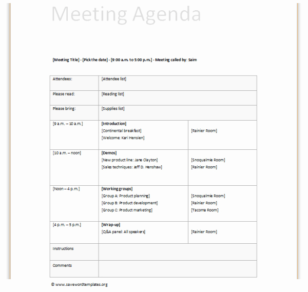 Ms Word Meeting Agenda Template Beautiful Meeting Agenda