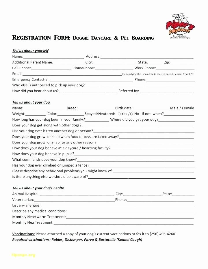 Nc Bill Of Sale Dmv Awesome Dmv Receipt How to Write A Bill Sale Bill Sale form