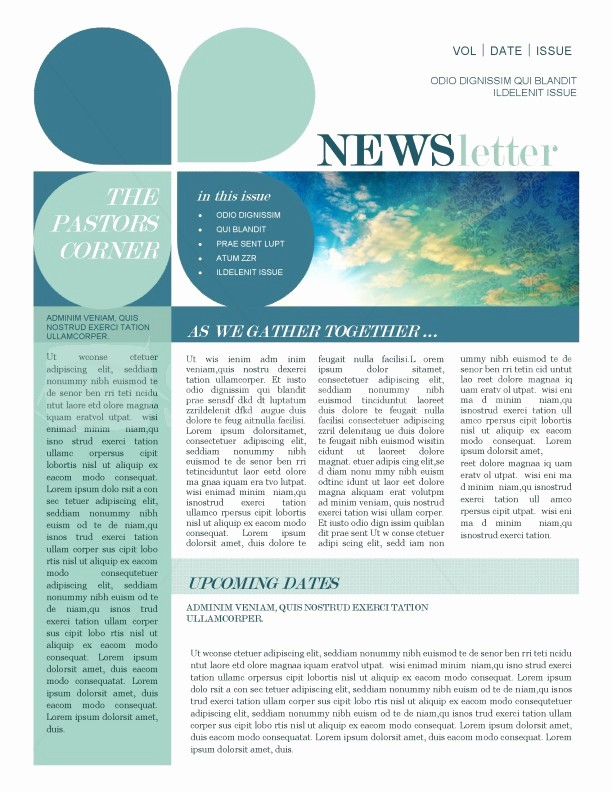 News Letter Templates In Word Luxury Mission Update Newsletter Template Template