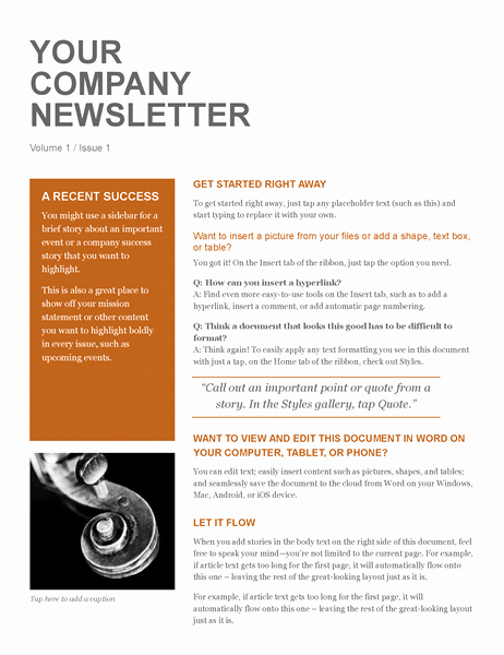 News Letter Templates In Word New Pany Newsletter Fice Templates